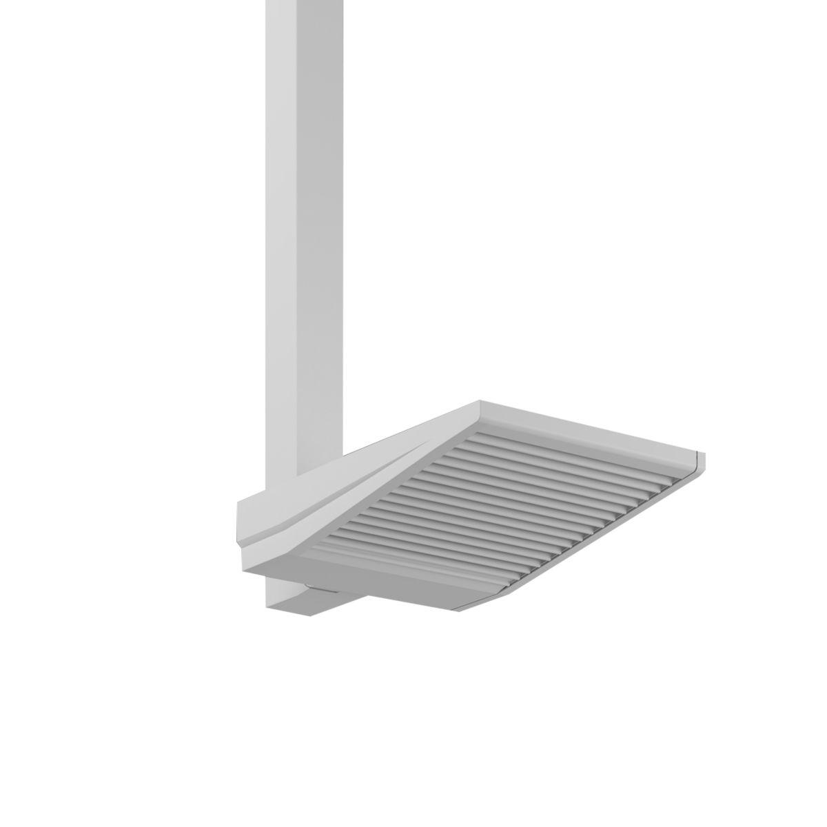 ASYX 2 LED Asymmetric Floodlight - Single Pendant