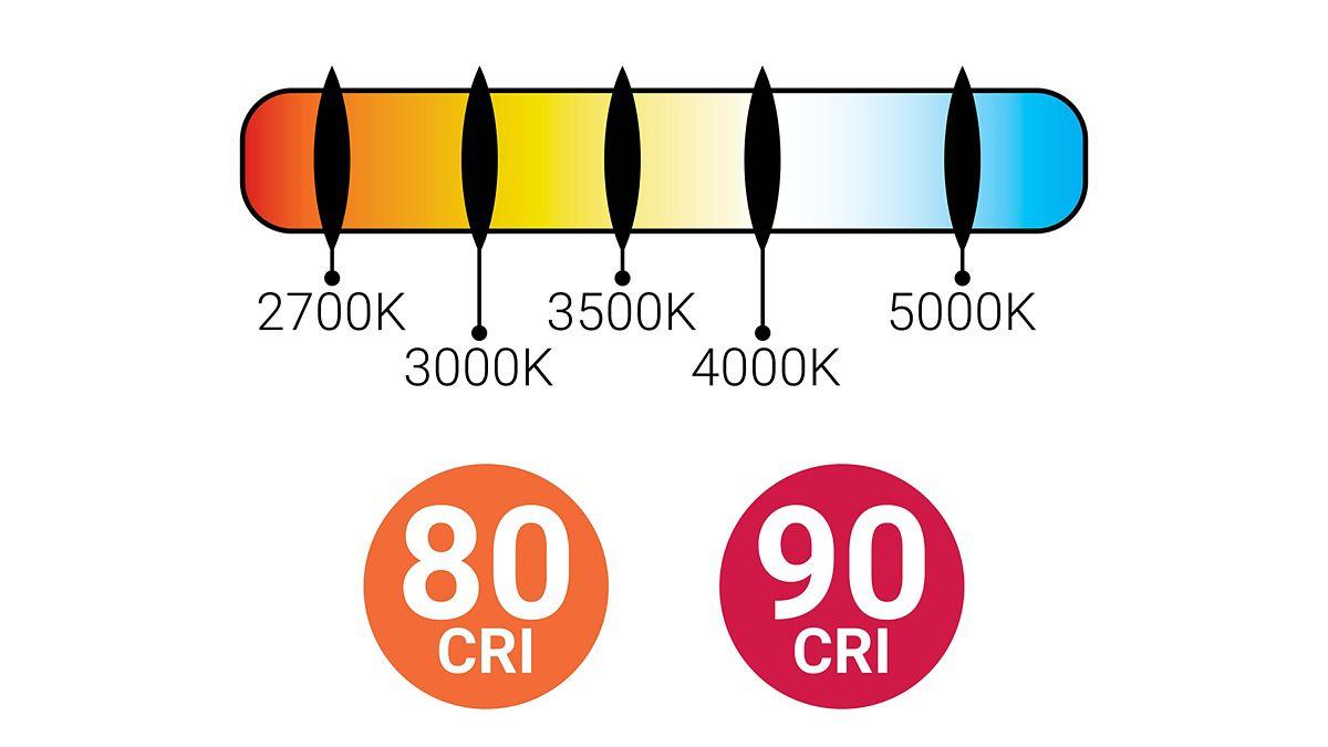 Wide range of downlight options